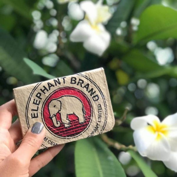 lifestyle elephant brand